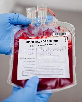 Cordlife One Blood