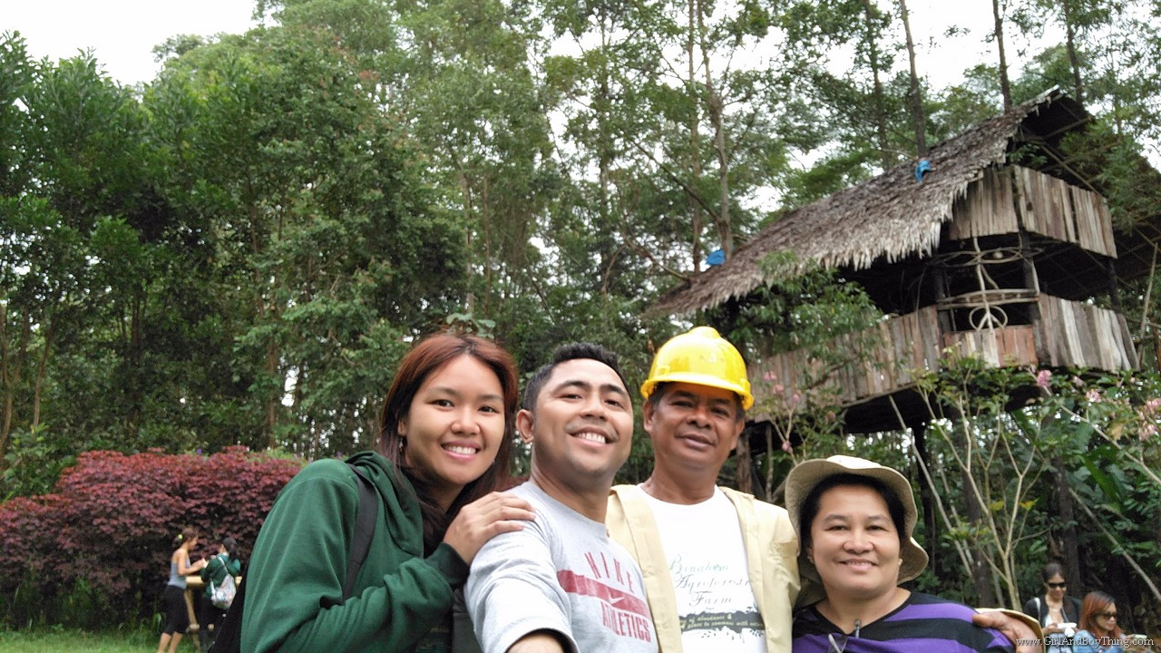 Binahon Agroforestry farm activities (3)