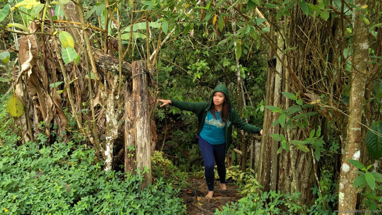 Binahon Agroforestry farm activities (4)