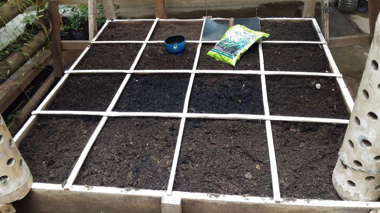 Cervantes Farm Square Foot Urban Gardening