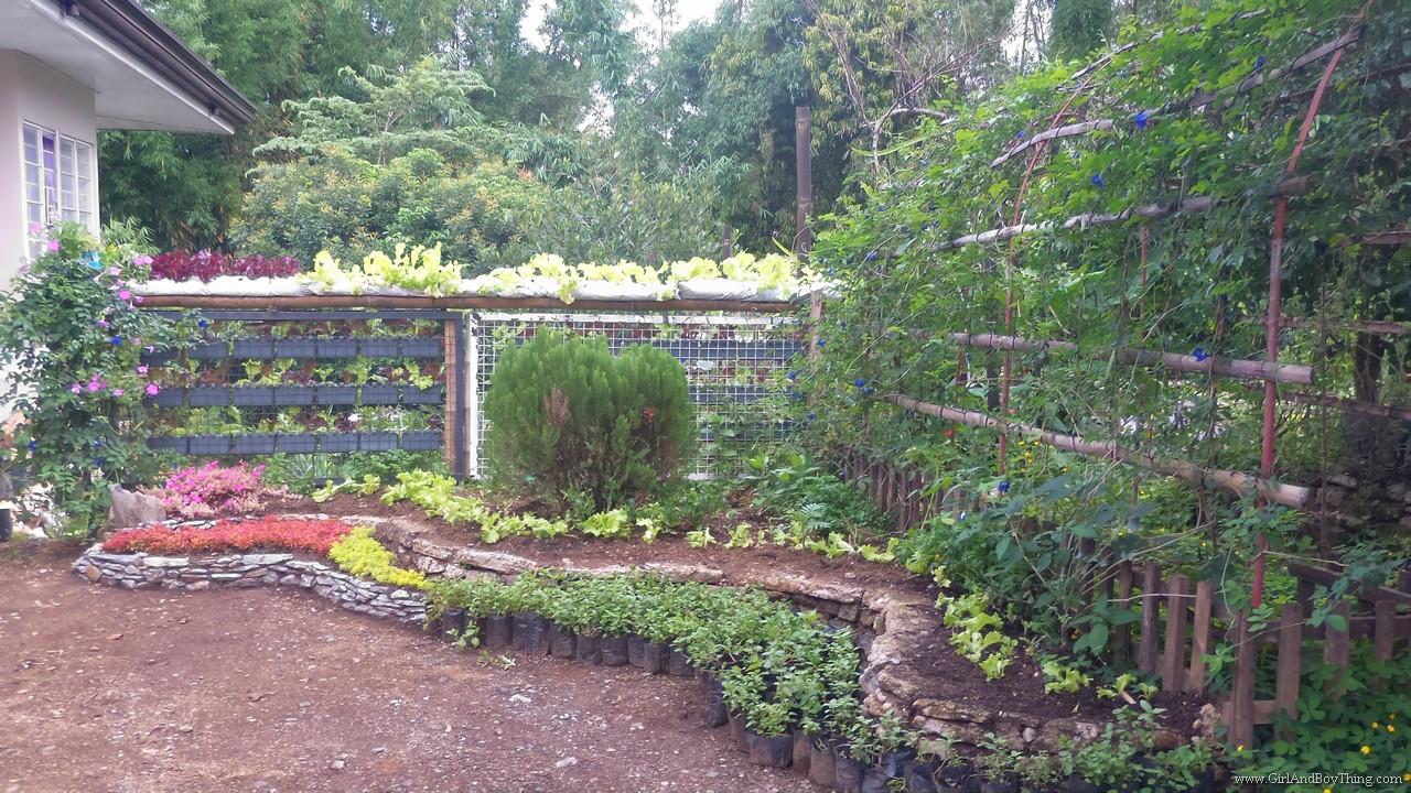 Jaya Secret Garden Organic Farm Tour (1)