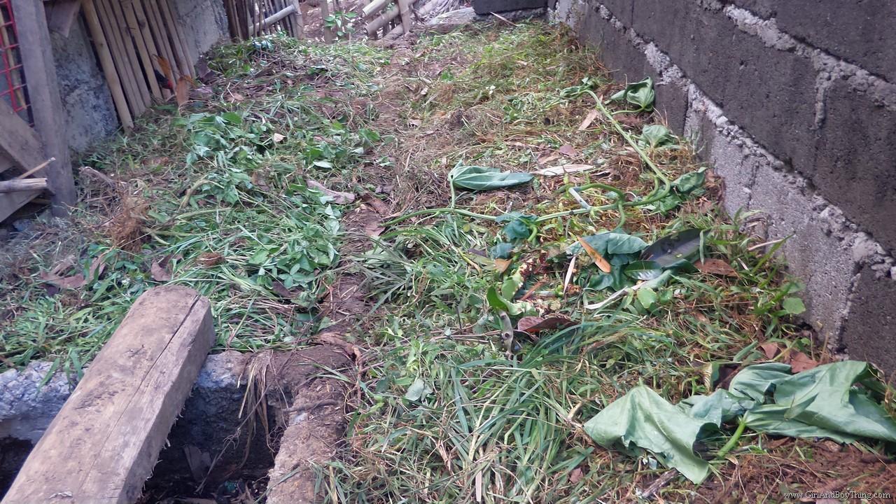 Jaya Secret Garden Organic compost