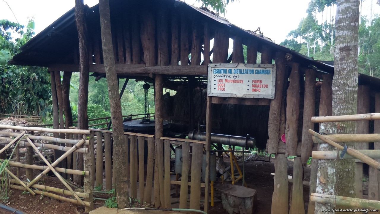 Mt. Kitanglad Agri-Ecological Techno-Demo Center Essential oil distillation chamber (2)
