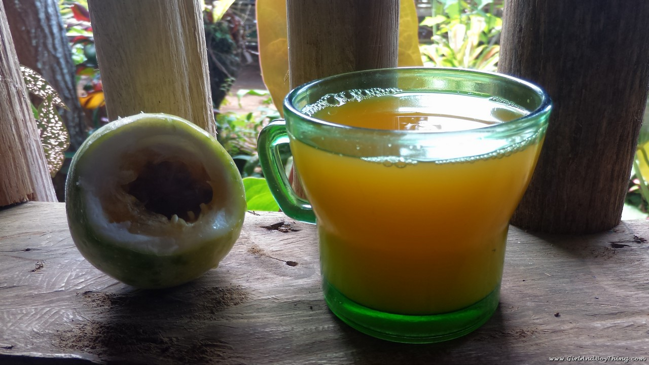 Mt. Kitanglad Agri-Ecological Techno-Demo Center Passion fruit juice