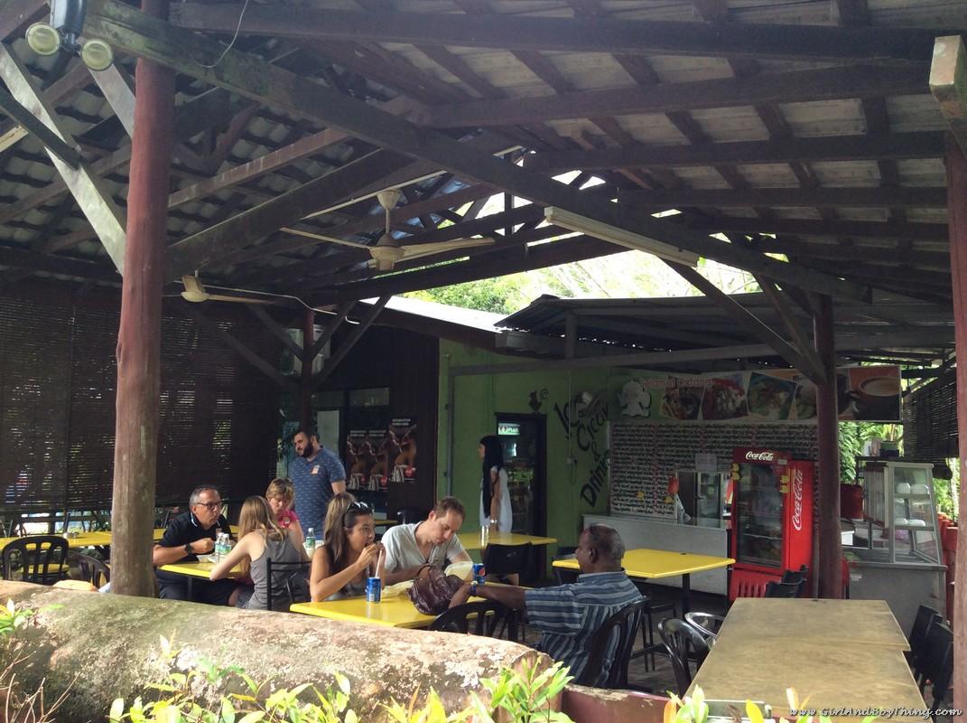 national-elephant-conservation-centre-jumbo-cafe-1