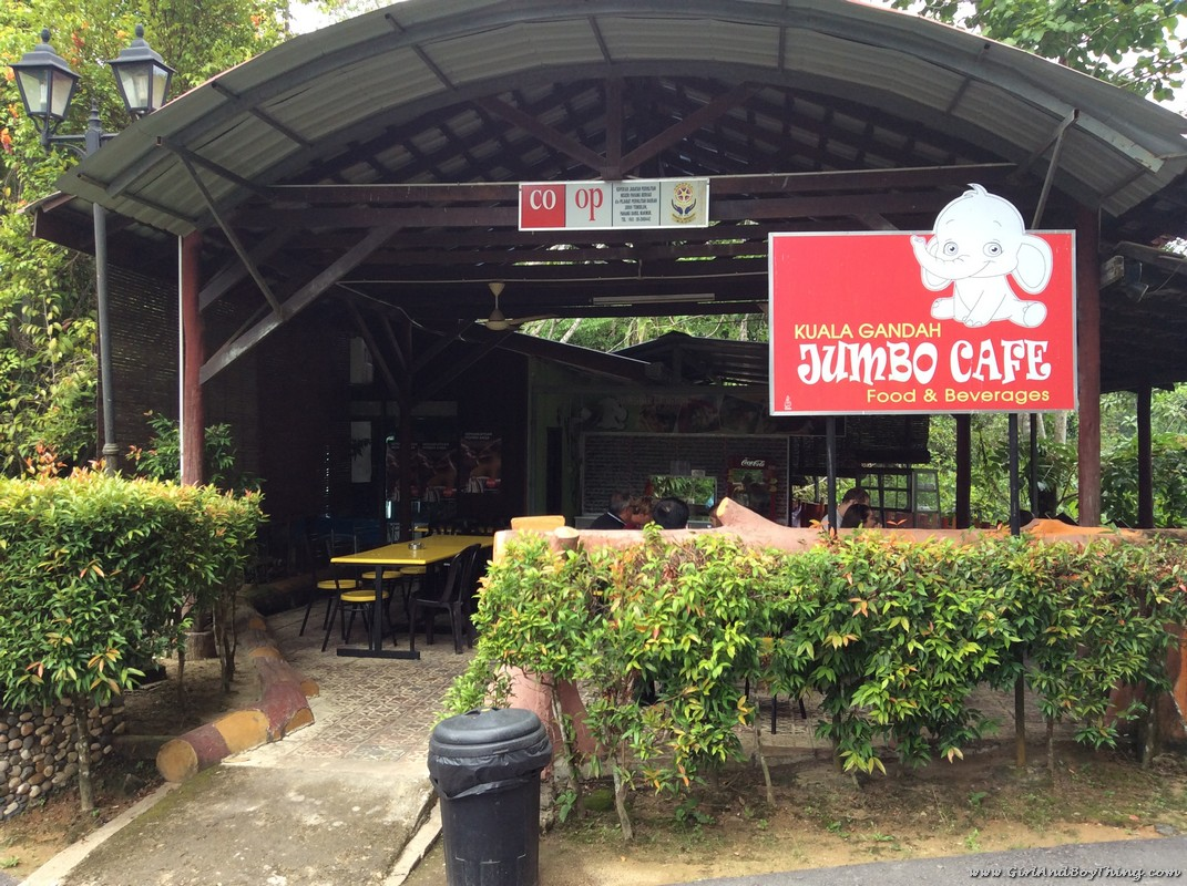 national-elephant-conservation-centre-jumbo-cafe-2