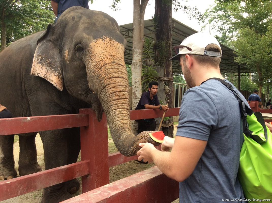 National Elephant Conservation Centre