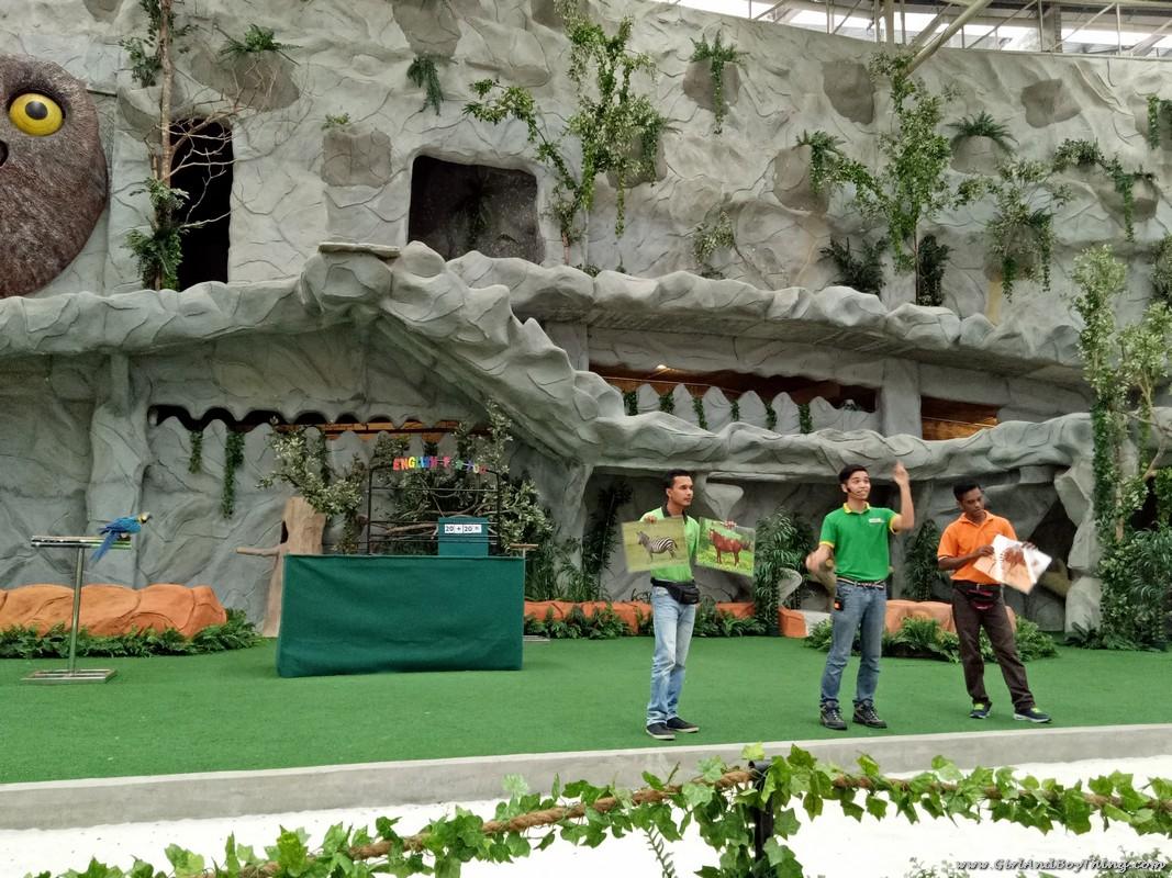bukit-gambang-safari-park-bird-show