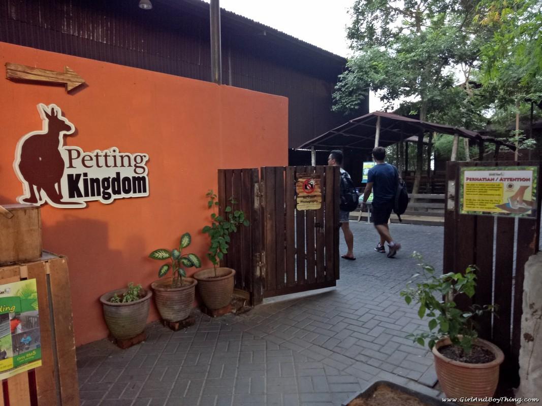 bukit-gambang-safari-park-petting-kingdom