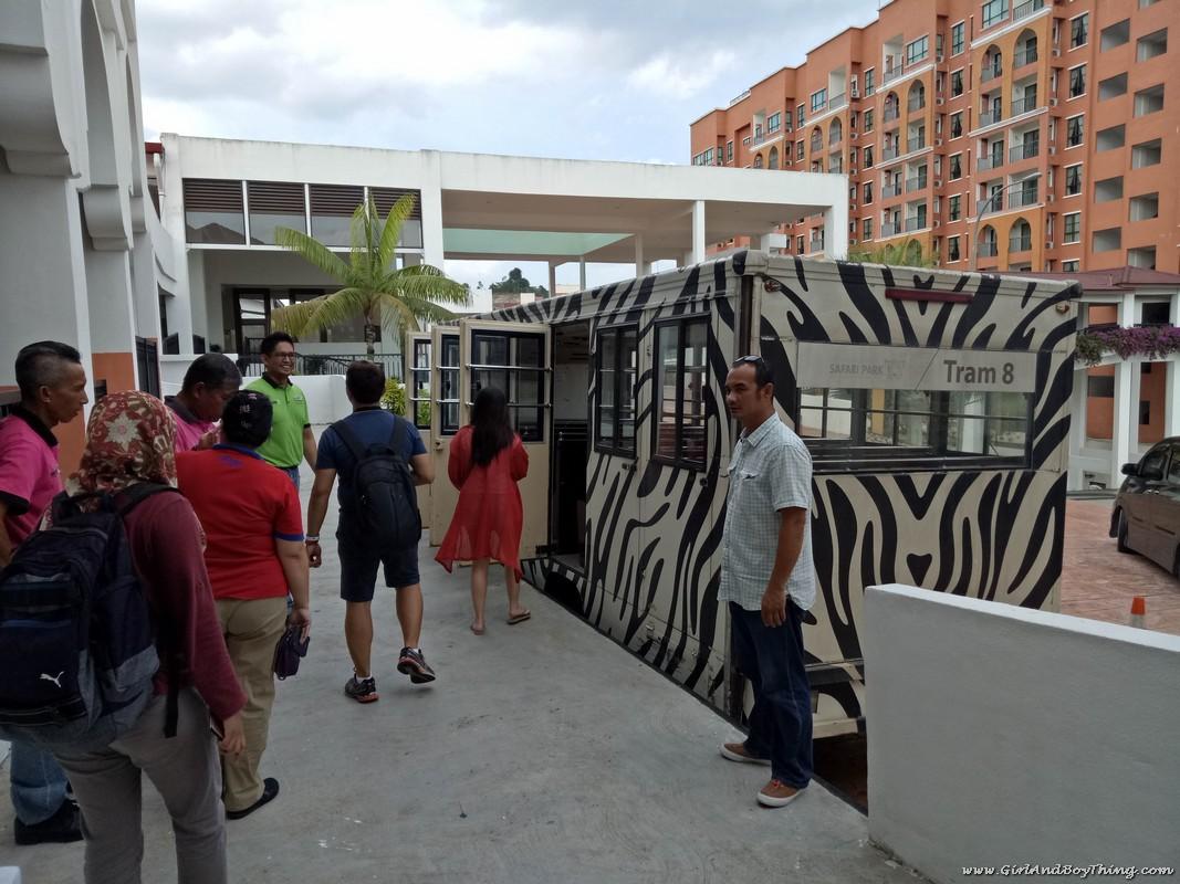 BGRCsafari tram