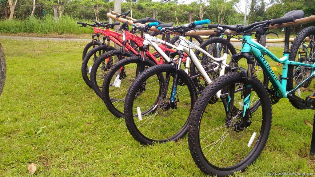 camp-n-bike-hub-bike-rentals