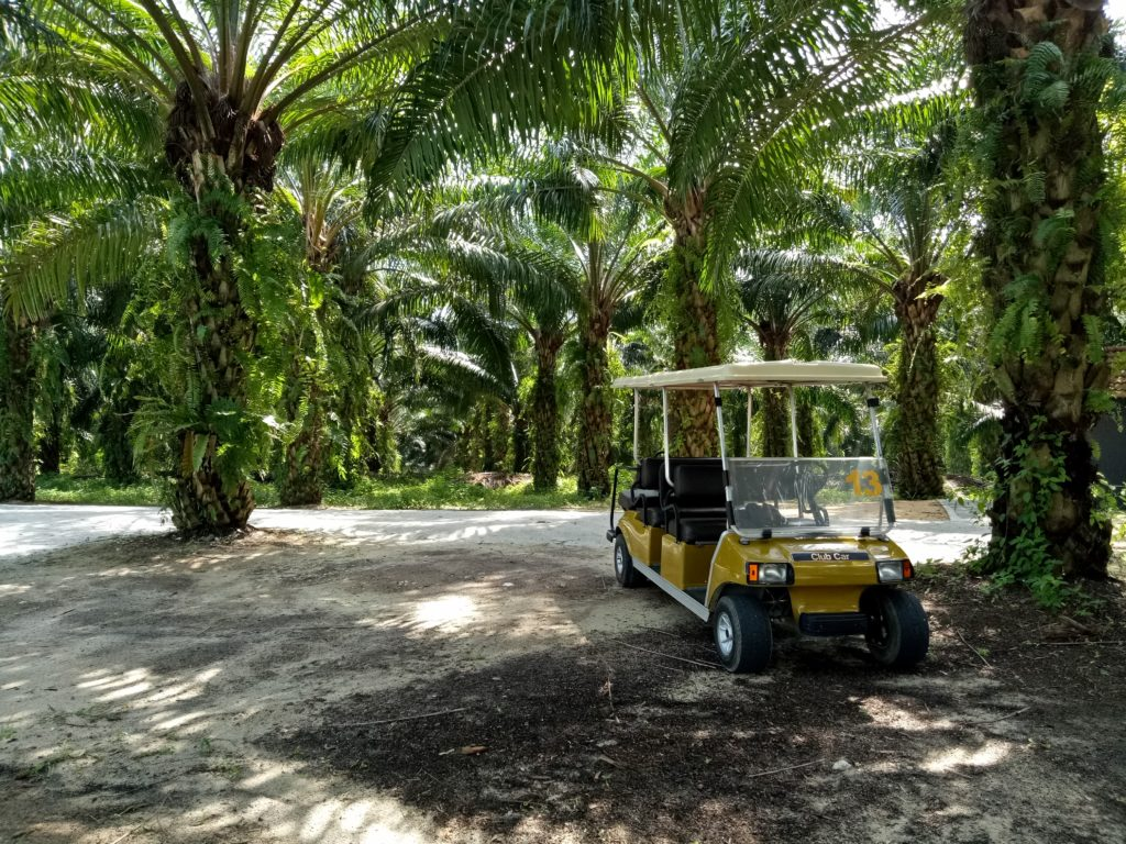 mangala-resort-spa-golf-cart