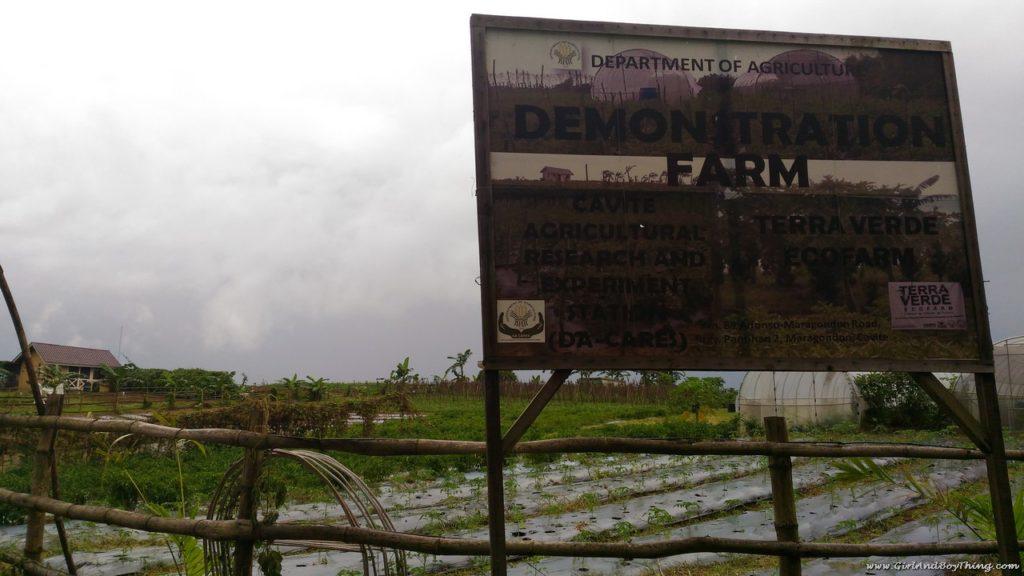 terra-verde-ecofarm-demonstration-farm-1