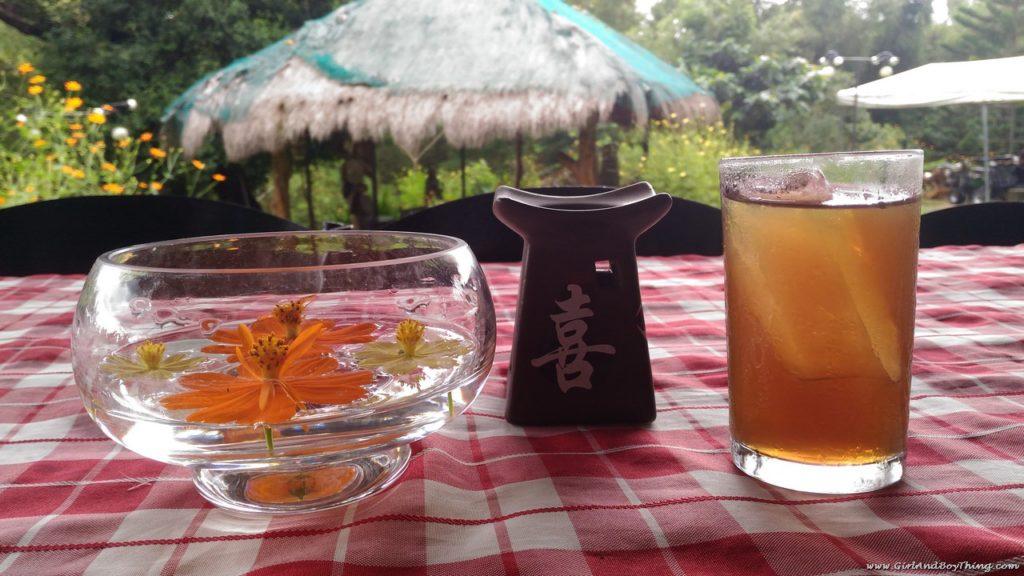 Terra Verde Ecofarm tanglad pandan juice