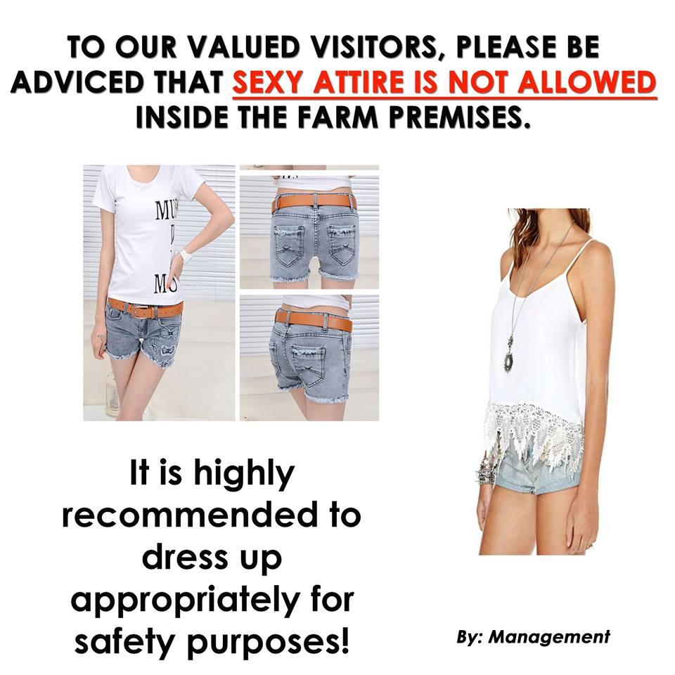 canaan-hill-farm-and-honey-garden-in-biliran-farm-rules