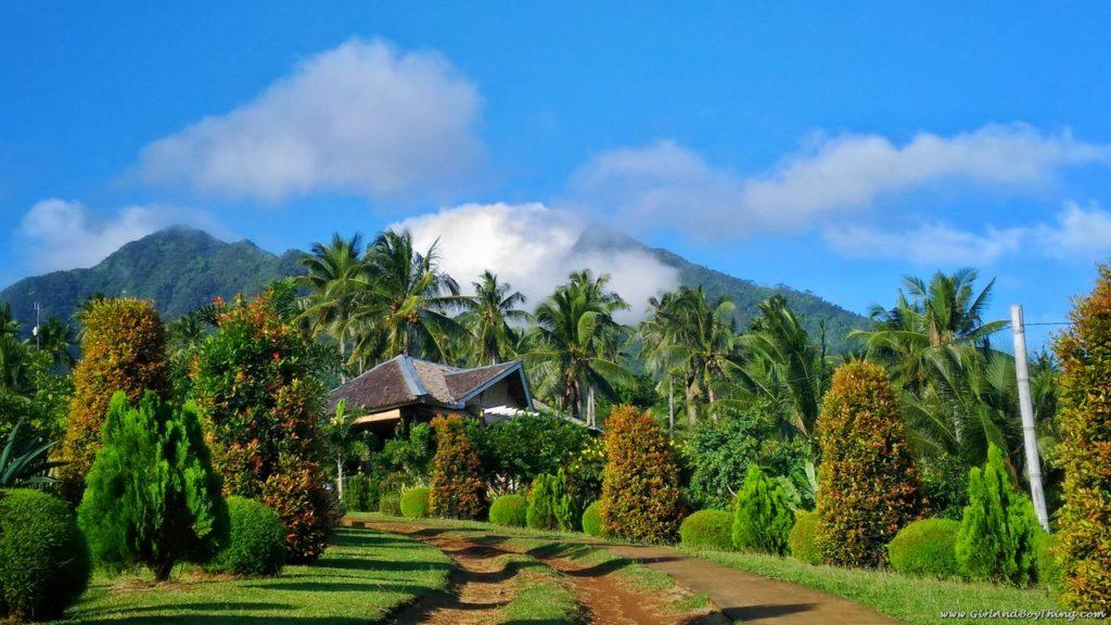 canaan-hill-organic-farm
