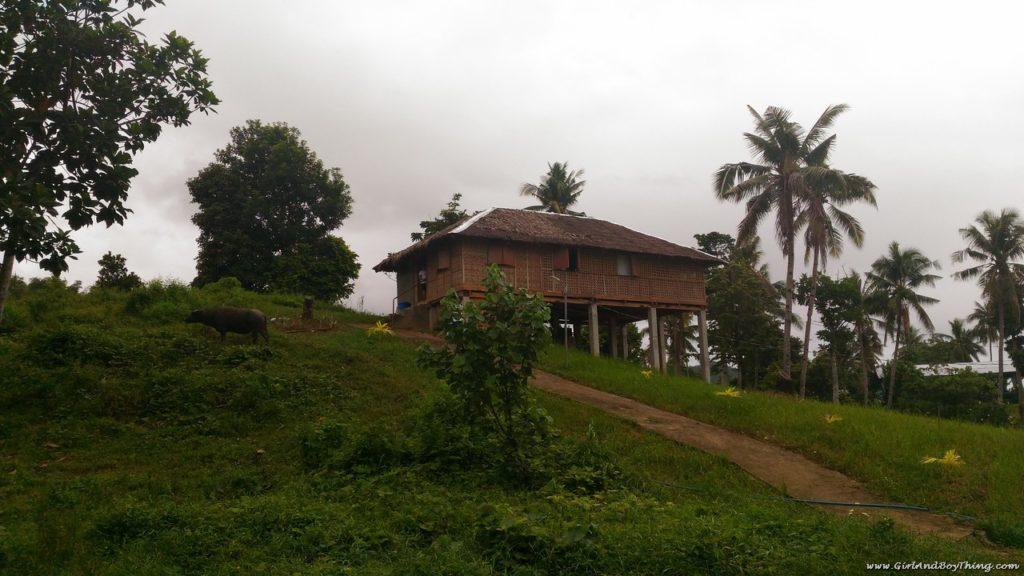 La Granja de Reyna Samar