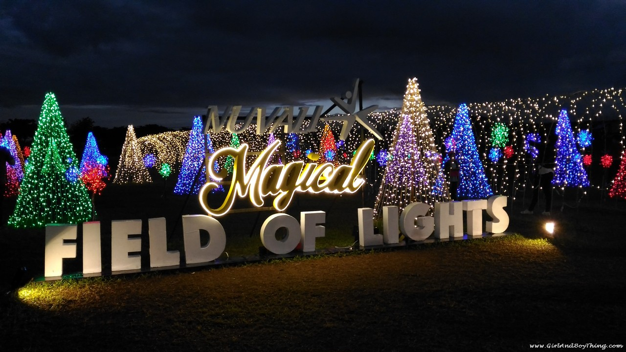 After Shopping In The Morning Or Afternoon, Head On To The Fields Nuvali  Which Is Just Few Meters Away From The Ayala Malls Solenad And Feast Your  Eyes On ...