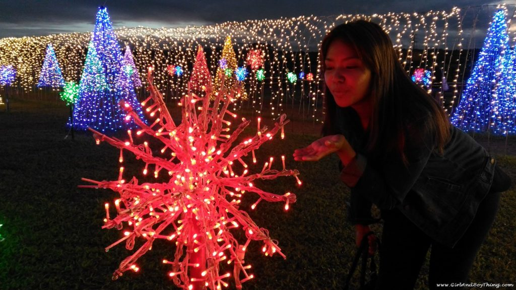 Nuvali Magical Field of Lights