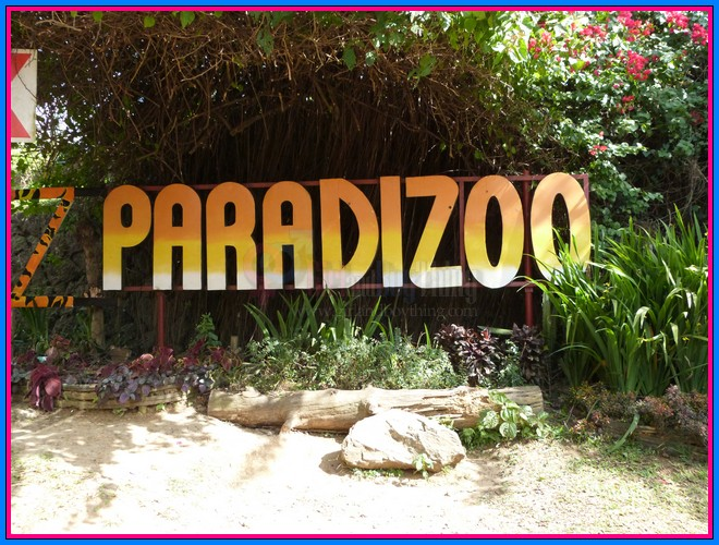 A Fun Day With Animals At PARADIZOO Theme Farm