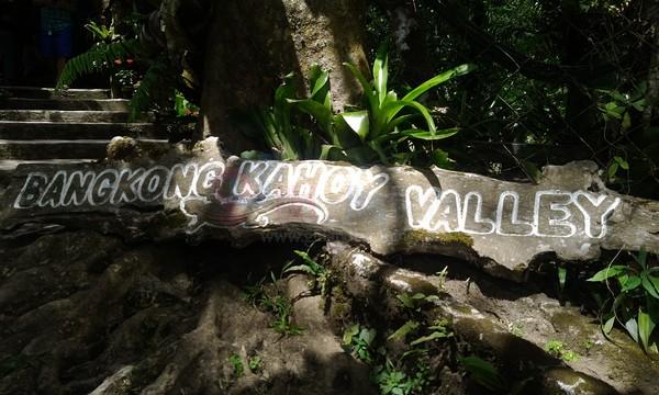 A Very Memorable Trip, The Organic Way At Bangkong Kahoy Valley