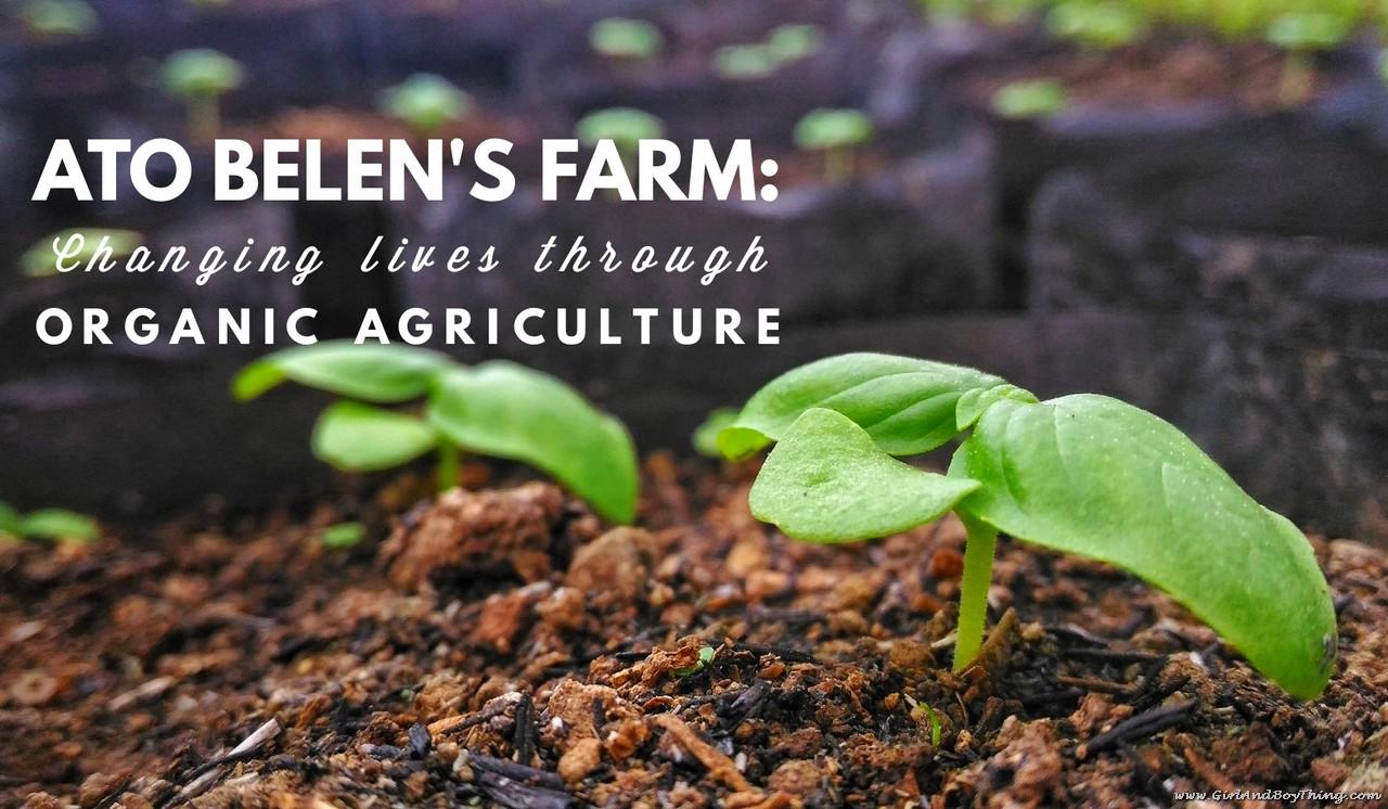 Ato Belen's Farm