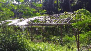 Mike Pedroso Farms