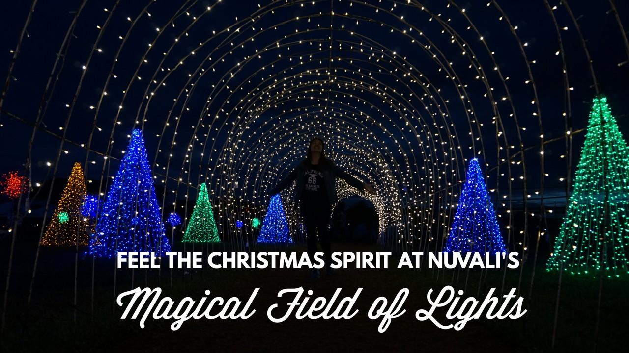 Nuvali Christmas Activities 2016