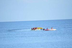 Playa Laiya Beach Club flying fish