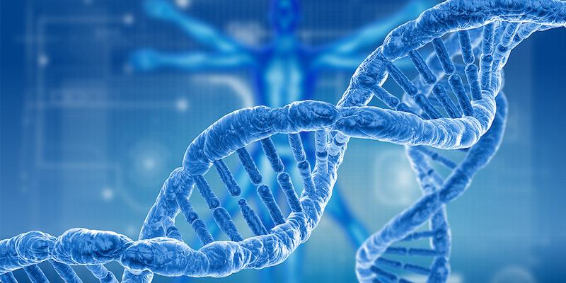 PlumCare DNA Advisor