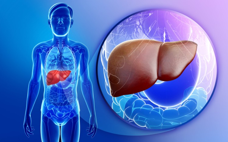 Why Do you need to take care of your Silent Hero...Your Liver