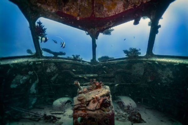 LIFE BELOW WATER: An Ocean Photography Book By 17-Year Old Ganden Medved-Po